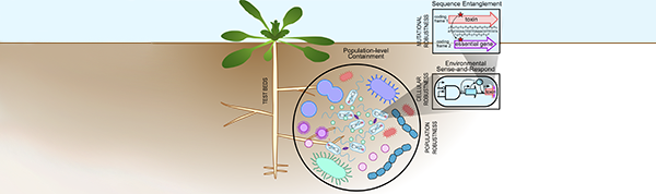 biosystems design for microbial systems