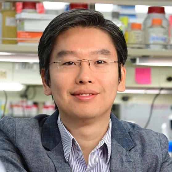 Harris Wang